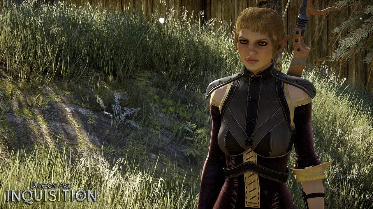 Best Dragon Age Inquisition Mage Builds